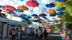 umbrelute colorate hunedoara 2